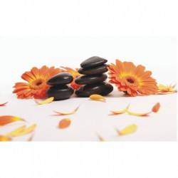 Obraz oranžových kvetov T024