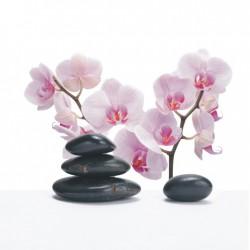 Obraz fialového kvetu T005