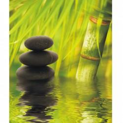 Obraz so zeleným pozadím T008