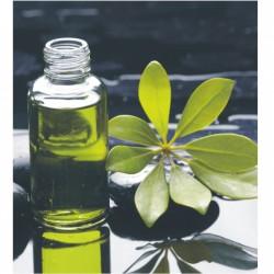 Čierno-zelený tlačený obraz T002