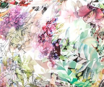 vzor lily